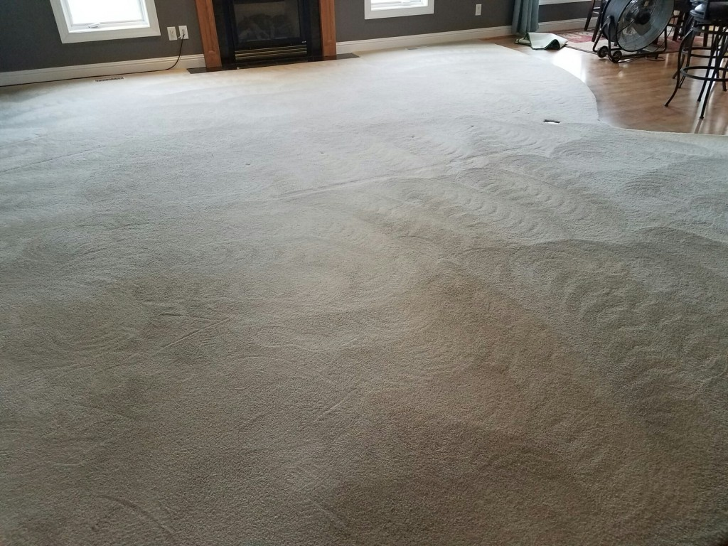 20161117 095113 Resized Carpet Cleaning Ames Iowa